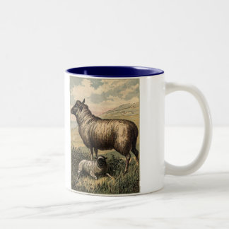 Tame Animals Sheep Two-Tone Coffee Mug