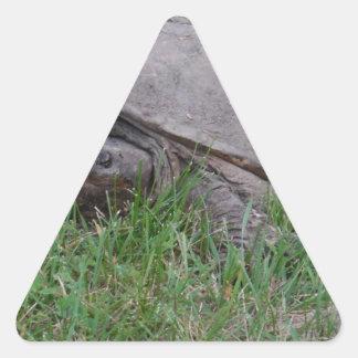 Tame Snapper Turtle Triangle Sticker