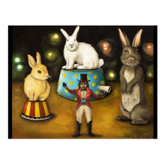 Taming Of The Giant Bunnies Postcard