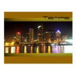 Tampa Bay at night Postcard