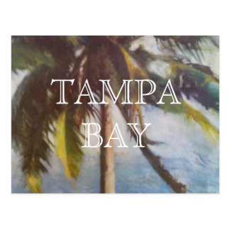 Tampa Bay Palm Tree Postcard