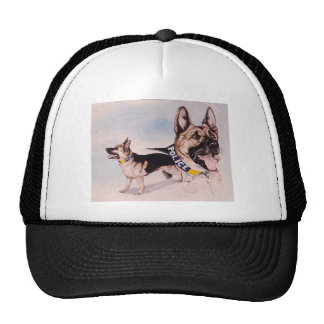 Tampa Bay Police Canine Mesh Hat