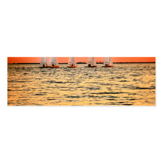Tampa Bay Sail Boats Davis Island Sunset Double-Sided Mini Business Cards (Pack Of 20)