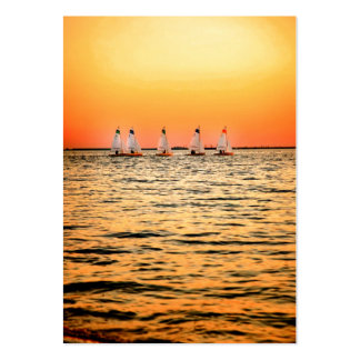 Tampa Bay Sail Boats Davis Island Sunset Large Business Cards (Pack Of 100)