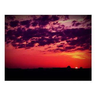 Tampa Bay Sunset Postcard