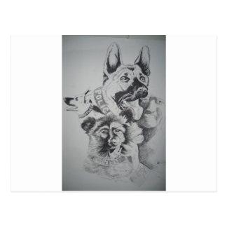 Tampa Canine 009 Postcard