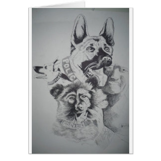 Tampa Canine Sketch by John Hart Card