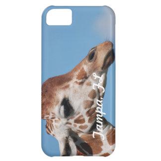 Tampa iPhone 5C Cases