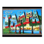 Tampa city Vintage Postcard Postcard