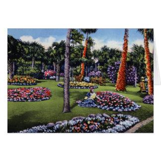 Tampa Florida Dupree Gardens Card