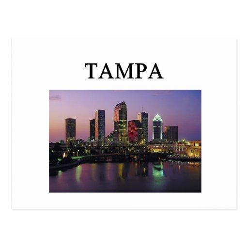 TAMPA florida Postcards