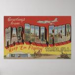 Tampa, la Florida - saludos del campo del eneldo d Poster