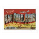 Tampa, la Florida - saludos del campo del eneldo Postal