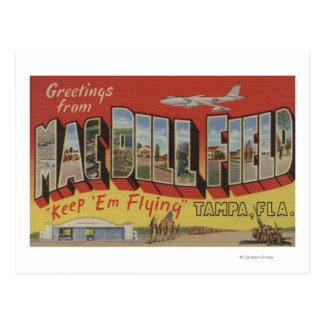 Tampa, la Florida - saludos del campo del eneldo Tarjeta Postal