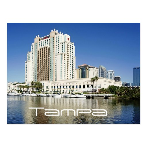 Tampa, Marriott, Waterside, Hotel & Marina Postcard