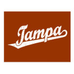 Tampa script logo in white distressed post cards