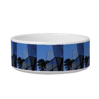 Tampa Skyscraper Bowl