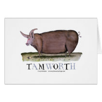 tamworth pig, tony fernandes card