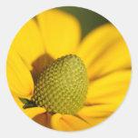 Tan amarillo pegatina redonda