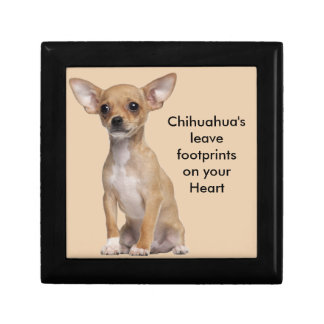 Tan and White Chihuahua Keepsake Box