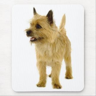 Tan Cairn Terrier Puppy Dog  Mousepad