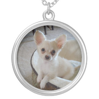 Tan Chihuahua Puppy Necklace