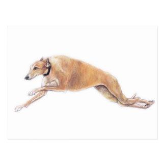 Tan Greyhound Running Dog Art Postcard