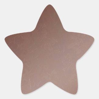 Tan Leather Finish - Elegant Look Paper Craft Star Sticker