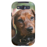 Tan Miniture Dachshund Samsung Galaxy SIII Cover