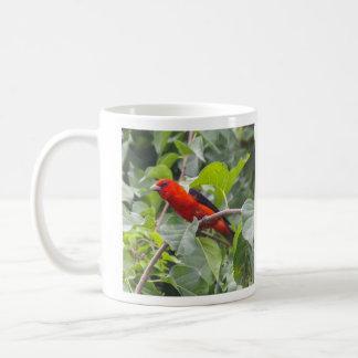 Tanager de escarlata taza