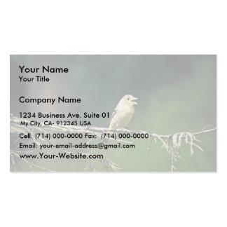 Tanager occidental tarjetas de negocios