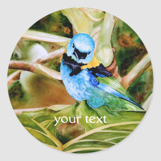 Tanager Portrait Watercolor Classic Round Sticker