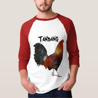 Tandang Basic 3/4 Sleeve Raglan T-Shirt