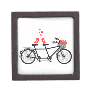 tandem bicycle with cute love birds gift box