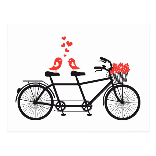 tandem bicycle with cute love birds postcard