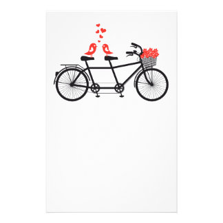 tandem bicycle with cute love birds stationery