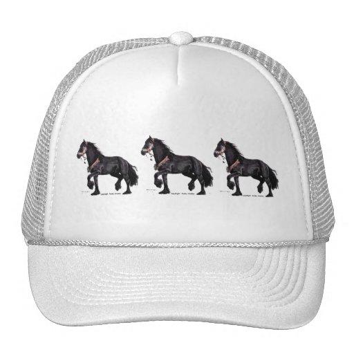 tandem friesians hat
