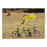 Tandem Snakes Note Card