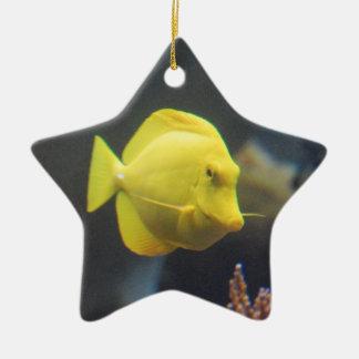 Tang Fish Ceramic Ornament