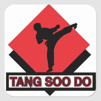 Tang Soo Do square stickers