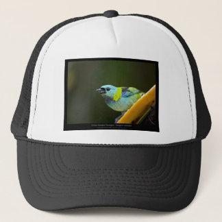 Tangara seledon - Green-headed Tanager (female) 01 Trucker Hat