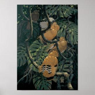 Tangerine Dancers Posters