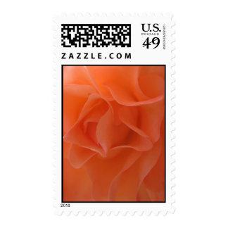 Tangerine Dream (1) Postage Stamps