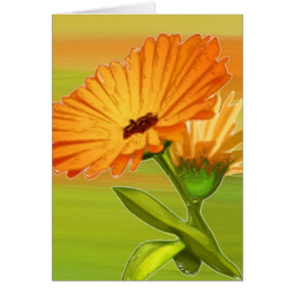 Tangerine Gerbera Daisy Card