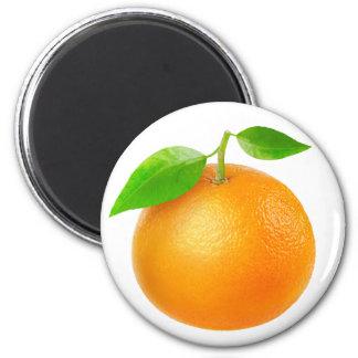 Tangerine Magnet
