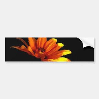 Tangerine Orange Floral Macro on Black Bumper Sticker