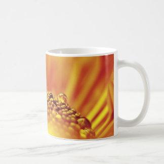 Tangerine Orange Flower Closeup Coffee Mug