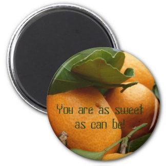 Tangerines 2 Inch Round Magnet