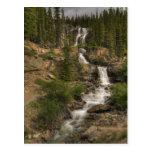 Tangle Falls Post Card