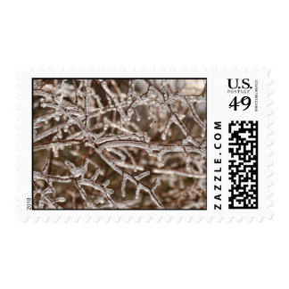 Tangle of Icy Branches Postage